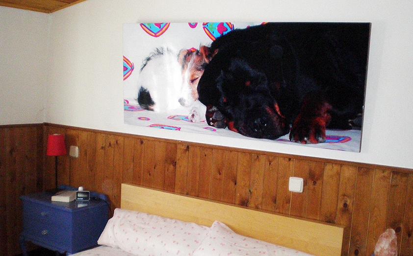Cuadros para encima de la cama latest cmo colocar cuadros - Cuadros encima cabecero cama ...