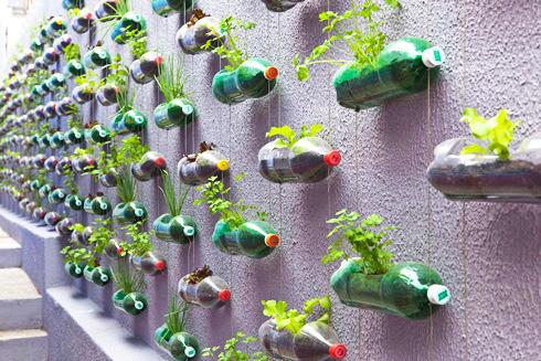 Jardin vertical de botellas plasticas