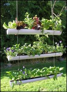 plantas-jardines-verticales-L-UG0W2s